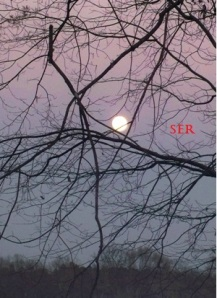 Moonlight by Sherry (C) 2014 All Rights Reserved